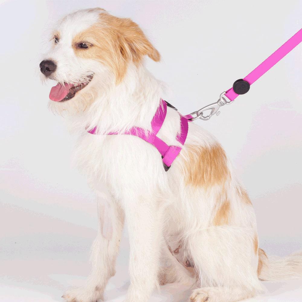 Peitoral Tradicional com Guia Pet Choice Lilás